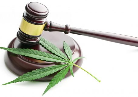 What Does Expanding Cannabis Legalization Mean for CRE Investors?